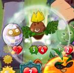 Coco Nuts