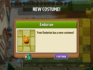 Getting Endurian Costume