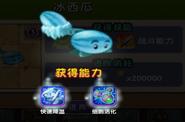 Melonpulta c 3 59610