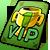 VIP 1 ticket