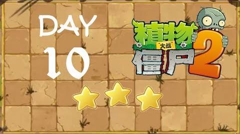 Kung Fu Day 10 TS