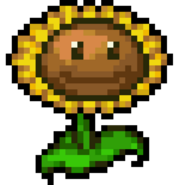 Sunflower d