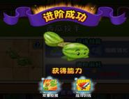 Melonpulta 2 59640
