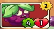 Wild Berry's card