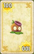 Gumnut Endless Zone Card Level 3-6
