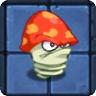 Nitration Mushroom2