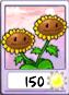 Paquete de semillas iOS BIRASOL
