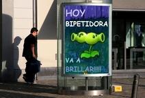 Hoybipe