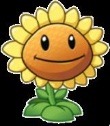 161px-Sunflower11