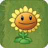 File:Sunflower2.png