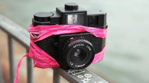 The Holga - Cult Camera?