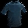 Blue Tshirt icon