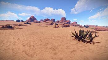 Пустыня Биоме