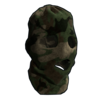 Forest Camo Balaclava icon