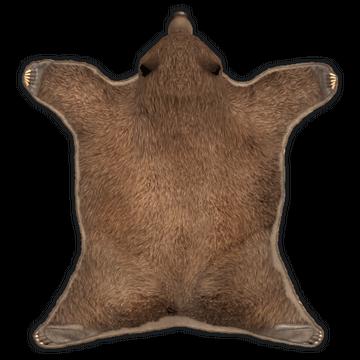 Rug Bear Skin   Rust Wiki   Fandom