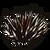 Floor Spikes icon