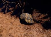 Cave node