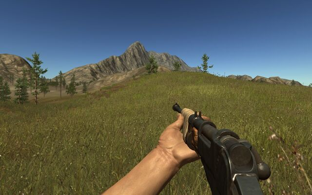 File:Bolt Action Rifle.jpg