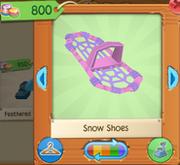 PinkSnowShoes