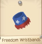 Freedom Wristbands