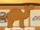 Camel Treasure Hunt