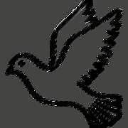 87D5EAEF-0783-488A-AAEF-BCE46ABF93B2