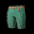 Beach Shorts (Green)
