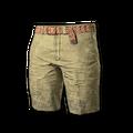 Beach Shorts (Beige)