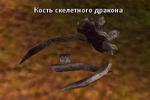 Кость скелетного дракона