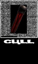 CullSlot