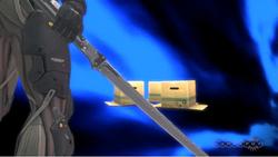 Raiden level 3