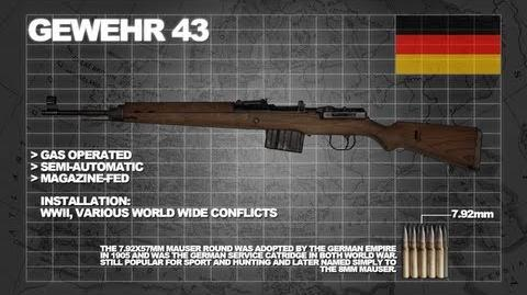 Z Armoury (Nazi Zombies Weaponry Guide) - The 'Gewehr 43' (G115 Compressor)