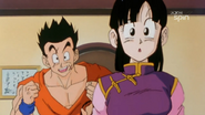 Chichi and Yamcha