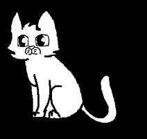 Котёнок к