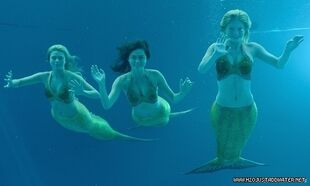 Mermaid-girls-3-h2o-just-add-water-12934319-500-300