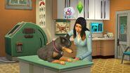 The Sims 4 Psy i koty 3