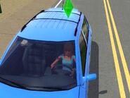 Simka w samochodzie