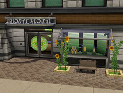 Sunflower spa Front