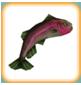 Rainbow Trout (freeplay)