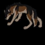 Plik:Wolf-Wiki.png