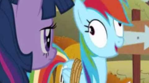 My Little Pony Friendship is Magic provides a realistic representation of life in Ponyville