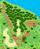 Friendship Forest (PMU 7)
