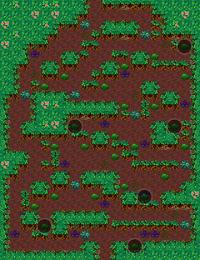 MysteriousJunglePuzzle2