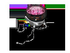 Brainbot1