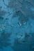 Blue Paint Habitat