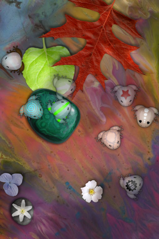 File:Glassfrogs.png