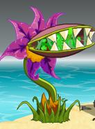 Flytrap eating