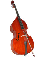 Double bass pic