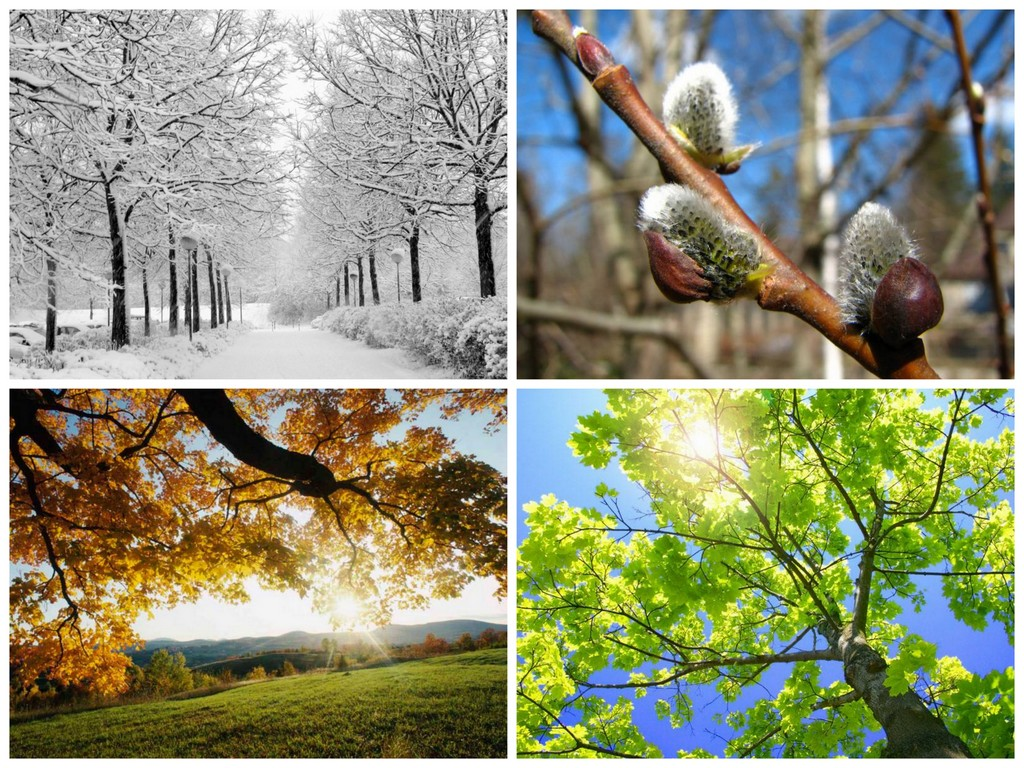 Времена года | Погода вики | Fandom