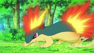 Ash igelarvar